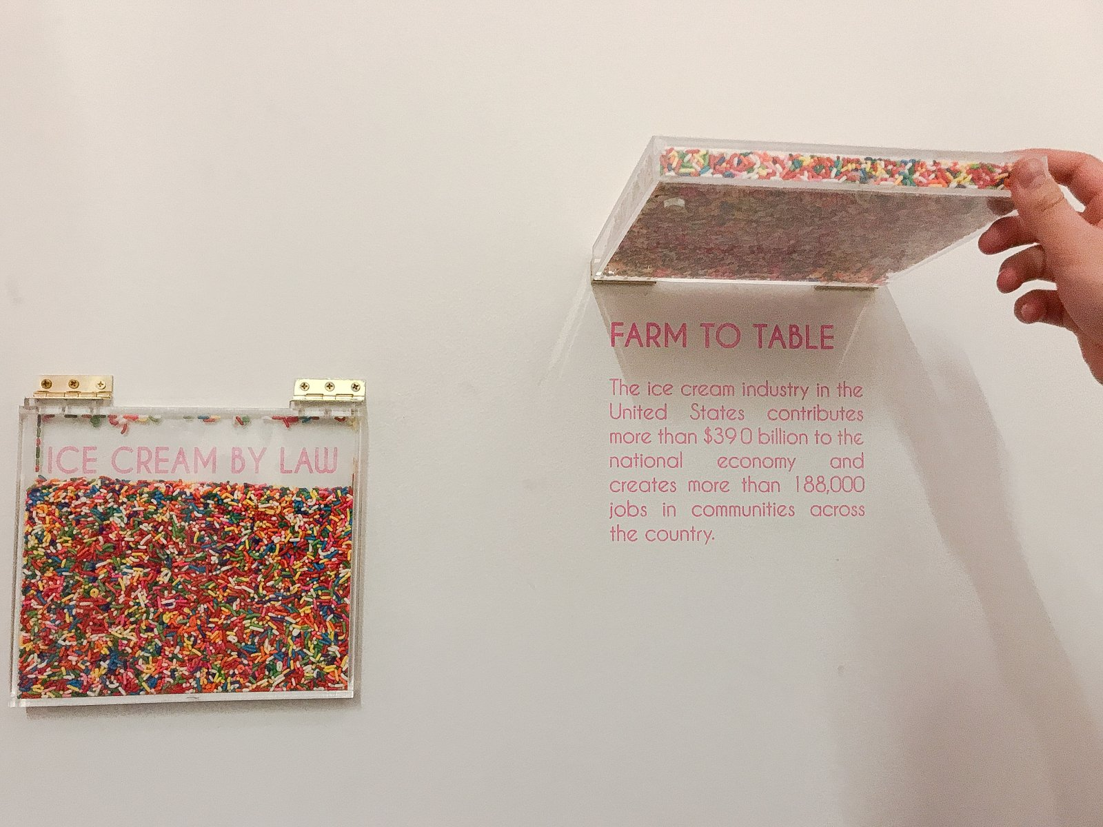 Museum of Ice Cream Sprinkles Pool Wall